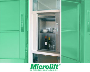 Mintacarichi Microlift
